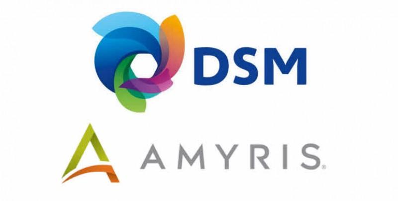 DSM investirá um total de US$ 50 milhões na empresa Amyris