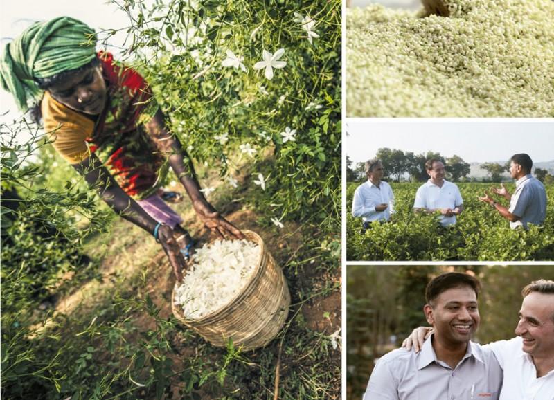 Firmenich acerta joint venture com indiana Jasmine Concrete para a produ��o de ingredientes naturais
