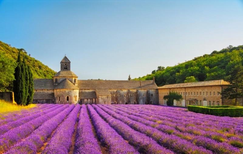 Sonia Corazza promove em junho, viagem de imersão no mundo dos cheiros na rota francesa da perfumaria
